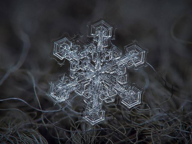 Snowflakes – a natural phenomenon explained by science