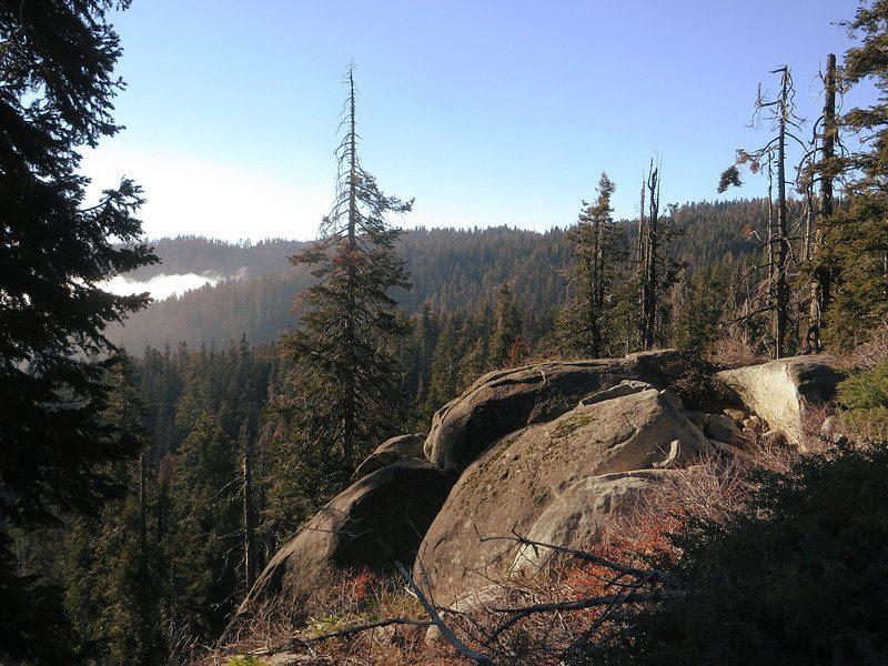 California state route sequoia national park california